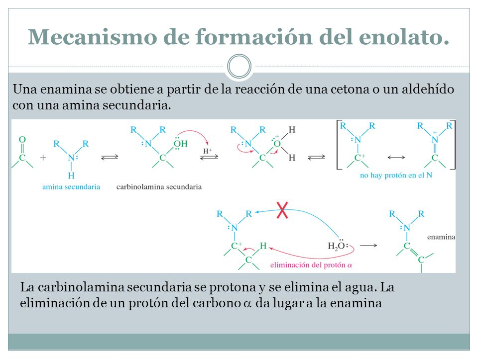 Mecanismo de formación del enolato.