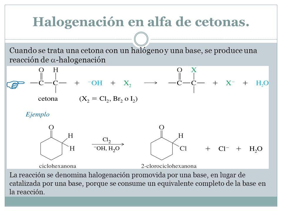 Halogenación en alfa de cetonas.