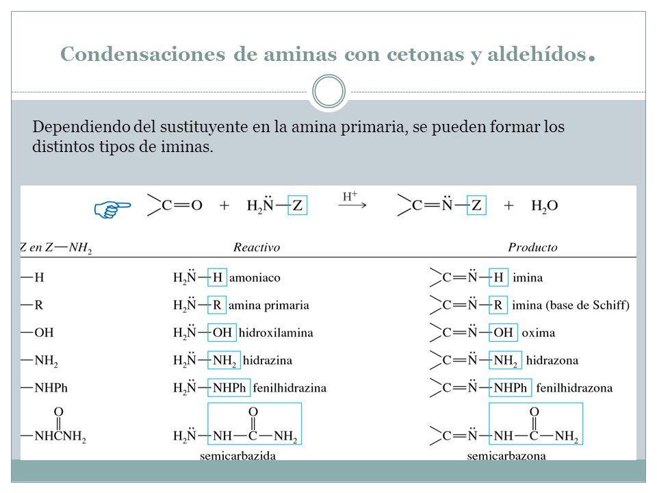 Condensaciones de aminas con cetonas y aldehídos.