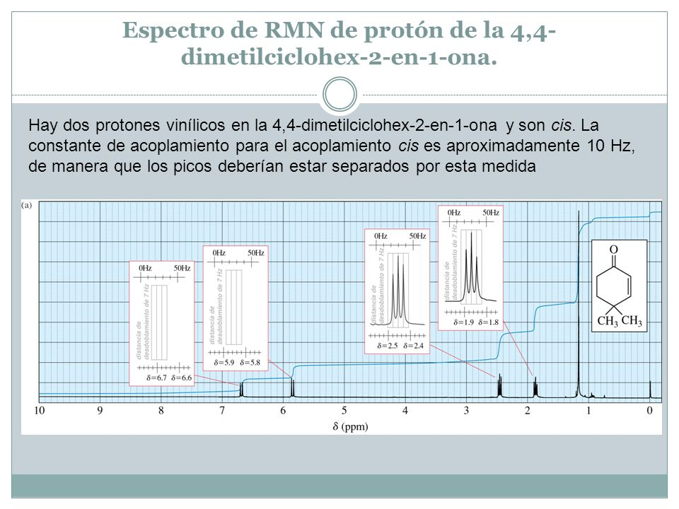 Espectro de RMN de protón de la 4,4-dimetilciclohex-2-en-1-ona.