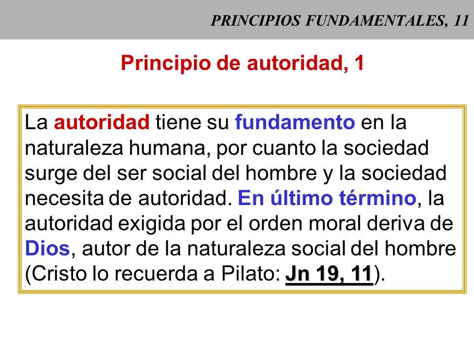 PRINCIPIOS FUNDAMENTALES, 11