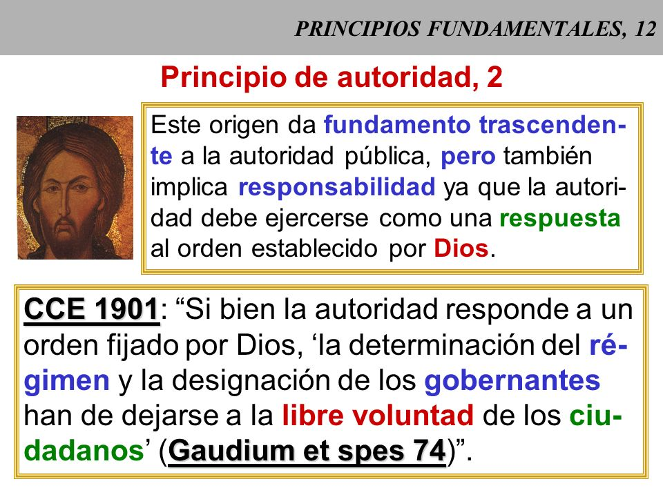 PRINCIPIOS FUNDAMENTALES, 12