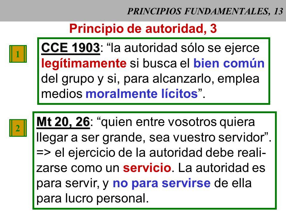 PRINCIPIOS FUNDAMENTALES, 13