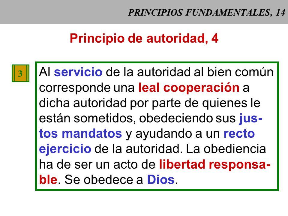 PRINCIPIOS FUNDAMENTALES, 14