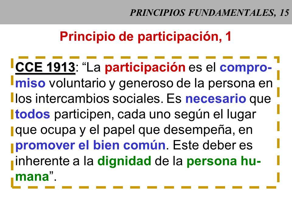 PRINCIPIOS FUNDAMENTALES, 15