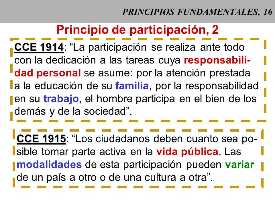 PRINCIPIOS FUNDAMENTALES, 16