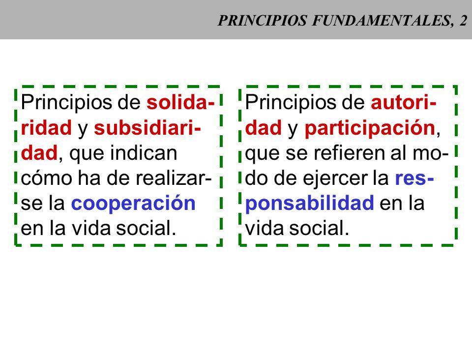 PRINCIPIOS FUNDAMENTALES, 2