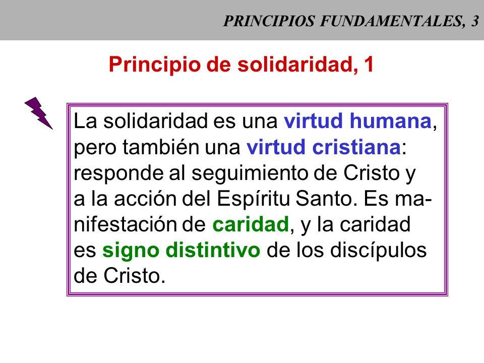 PRINCIPIOS FUNDAMENTALES, 3