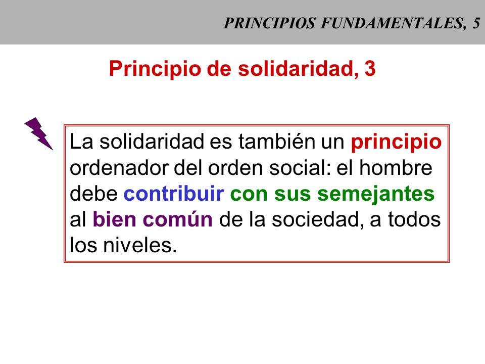 PRINCIPIOS FUNDAMENTALES, 5