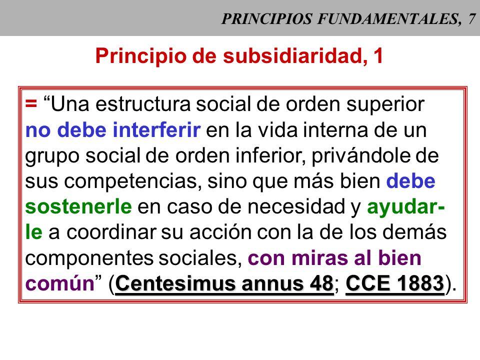 PRINCIPIOS FUNDAMENTALES, 7