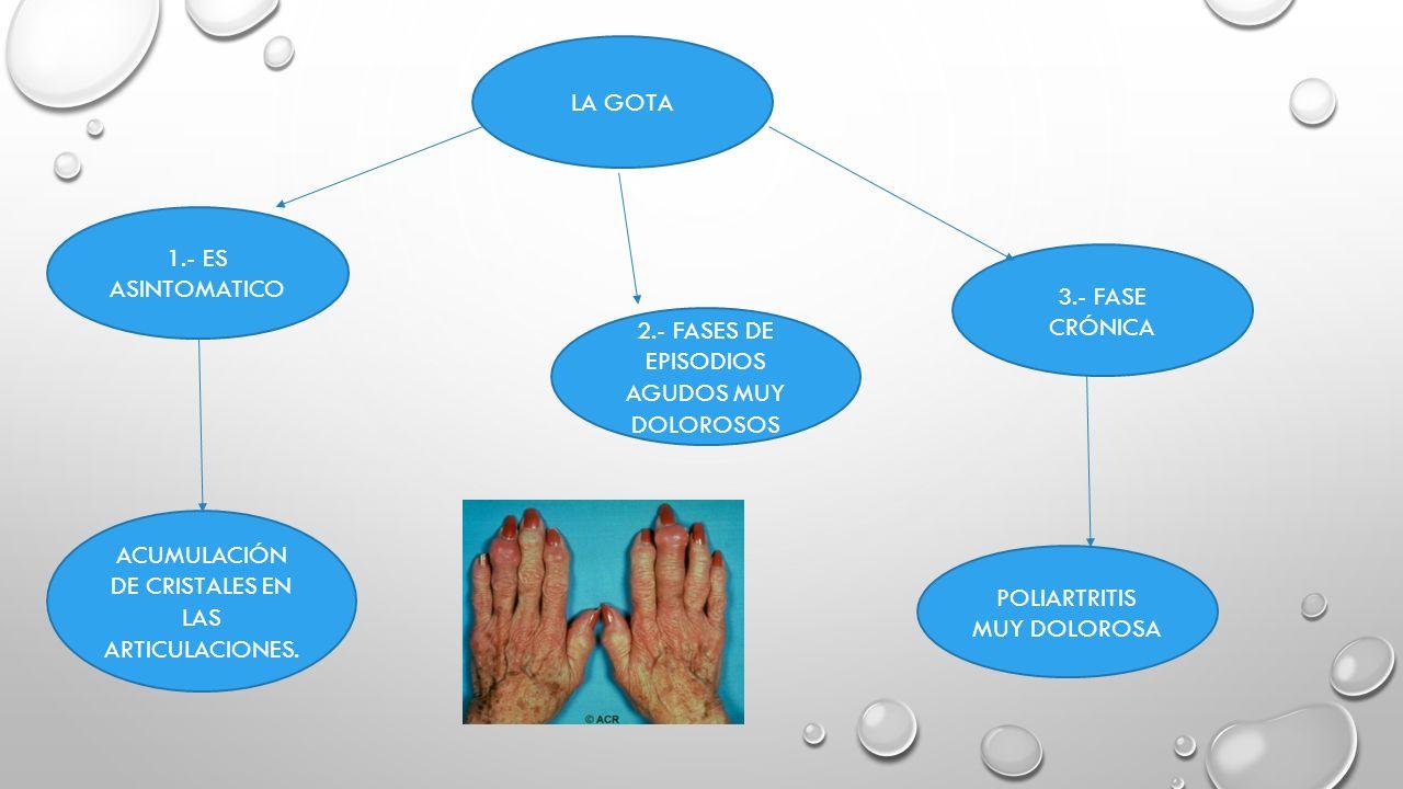 alpiste para el acido urico acido urico valores normales ninos acido urico y cancer de prostata