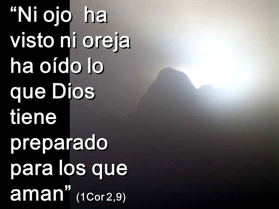Ni ojo ha visto ni oreja ha oído lo que Dios tiene preparado para los que aman (1Cor 2,9)