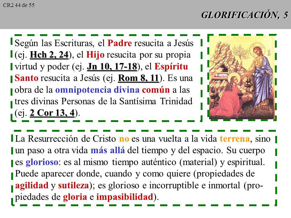 Según las Escrituras, el Padre resucita a Jesús