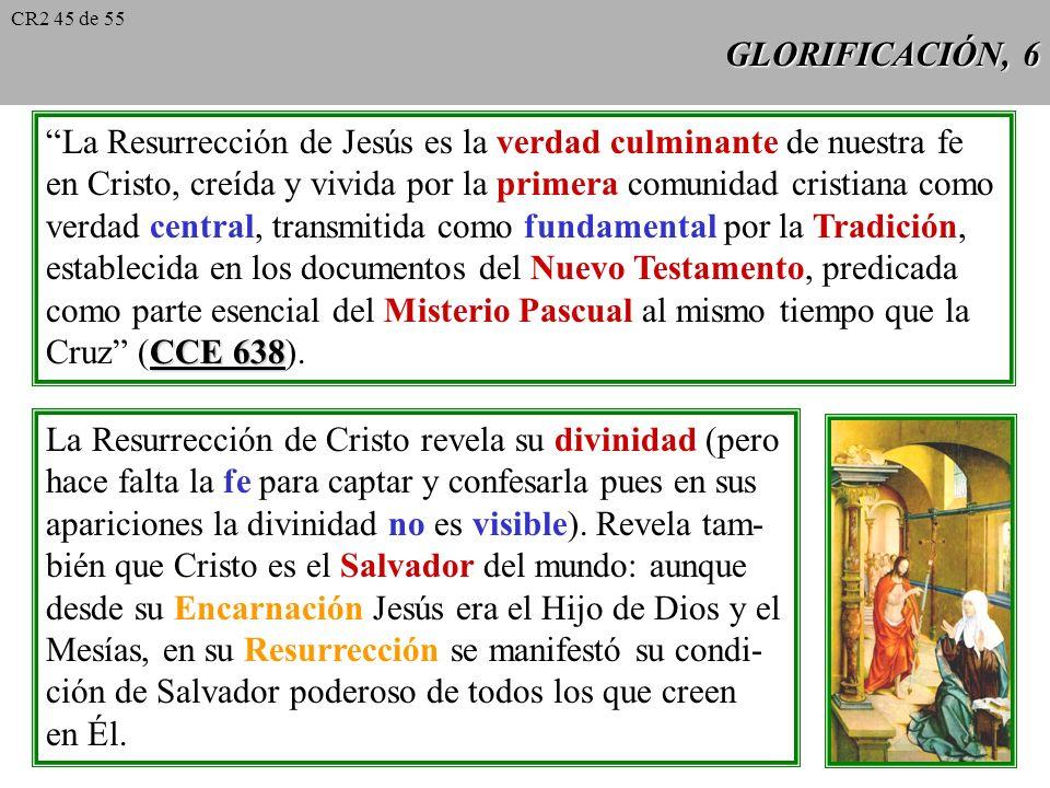 La Resurrección de Jesús es la verdad culminante de nuestra fe
