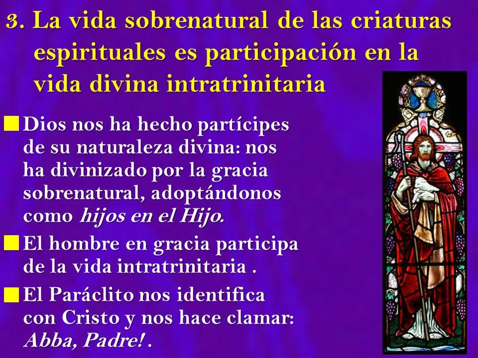 3. La vida sobrenatural de las criaturas espirituales es participación en la vida divina intratrinitaria