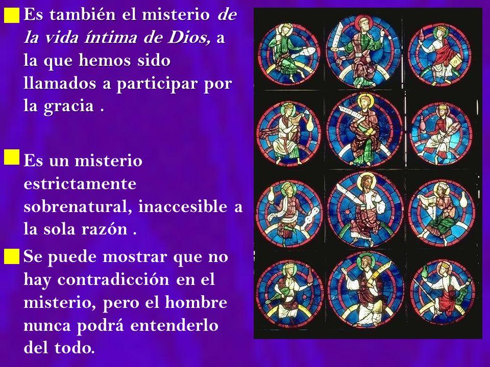 Es también el misterio de la vida íntima de Dios, a la que hemos sido llamados a participar por la gracia .