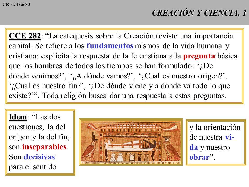 CCE 282: La catequesis sobre la Creación reviste una importancia