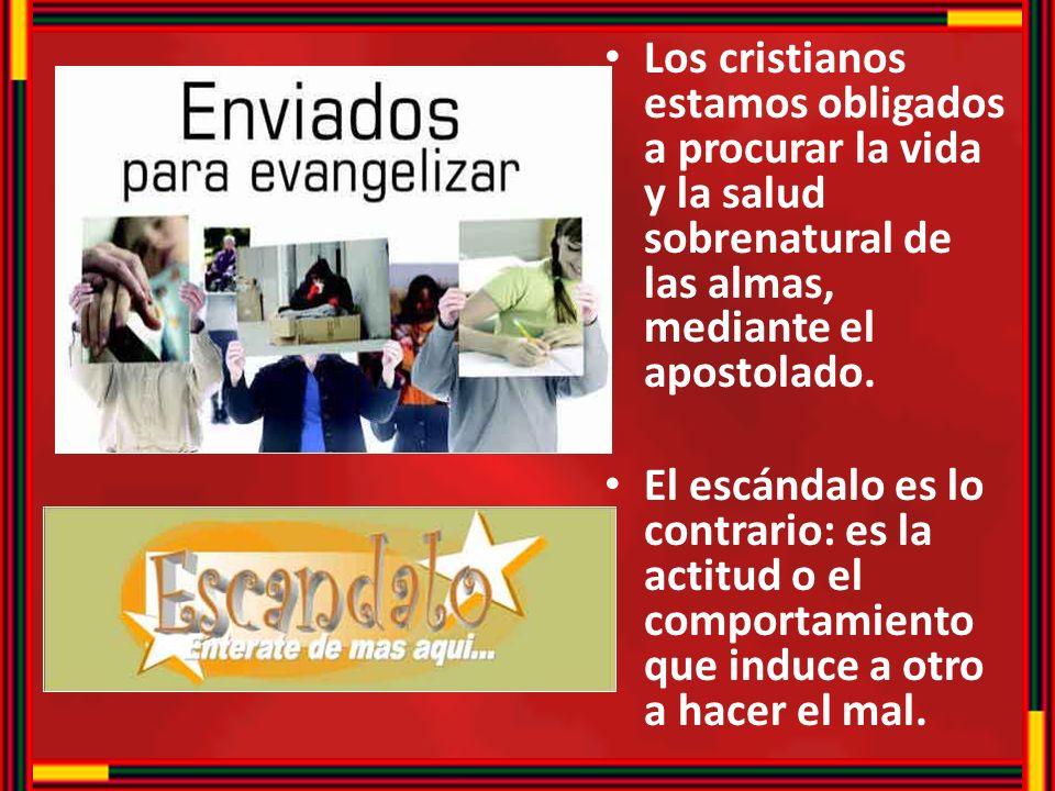 Los cristianos estamos obligados a procurar la vida y la salud sobrenatural de las almas, mediante el apostolado.