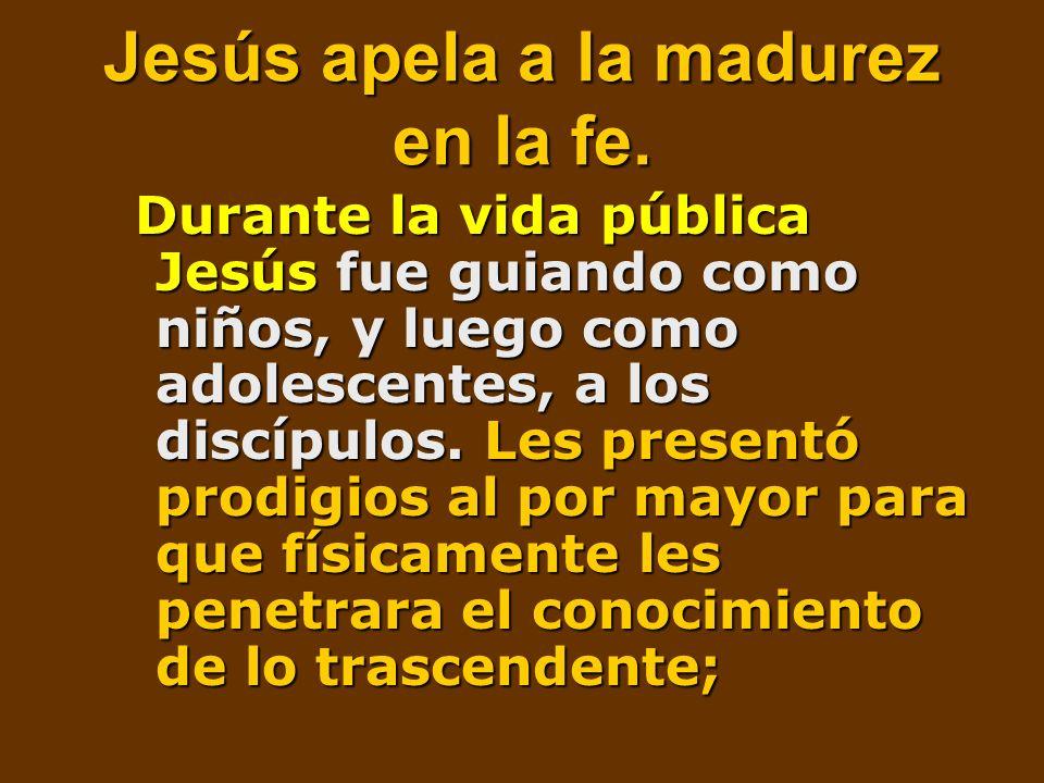 Jesús apela a la madurez en la fe.