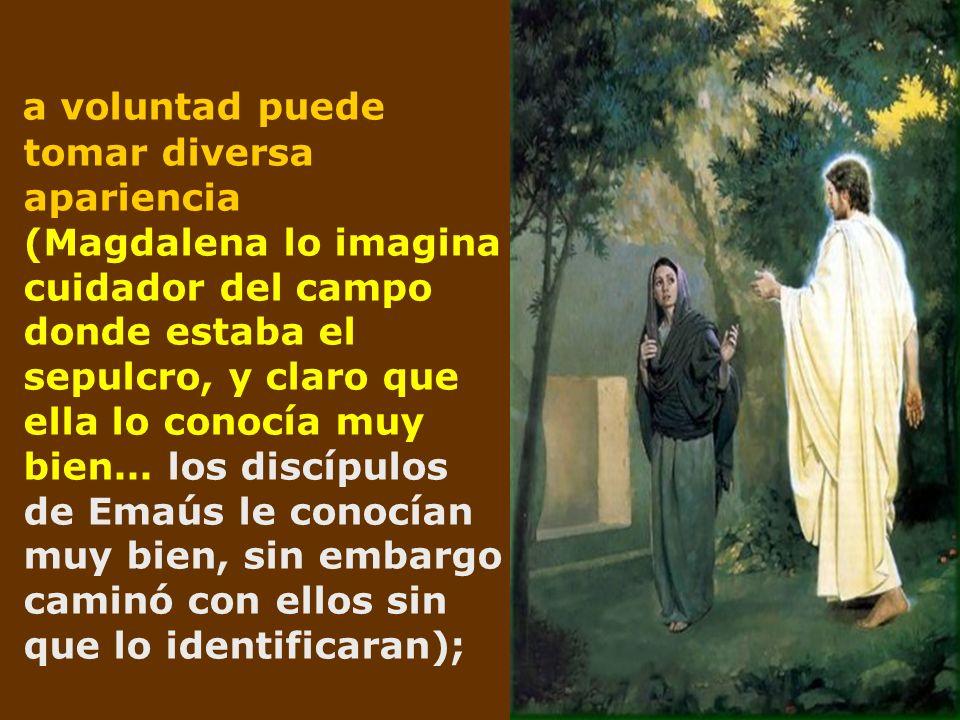 a voluntad puede tomar diversa apariencia (Magdalena lo imagina cuidador del campo donde estaba el sepulcro, y claro que ella lo conocía muy bien...
