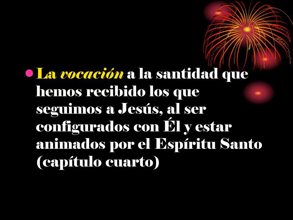 La vocación a la santidad que hemos recibido los que seguimos a Jesús, al ser configurados con Él y estar animados por el Espíritu Santo (capítulo cuarto)