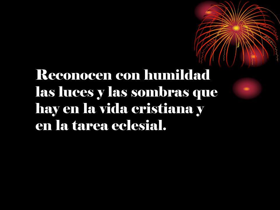 Reconocen con humildad las luces y las sombras que hay en la vida cristiana y en la tarea eclesial.