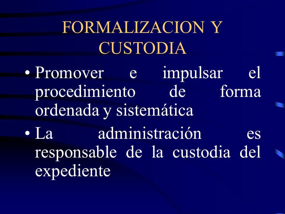 FORMALIZACION Y CUSTODIA