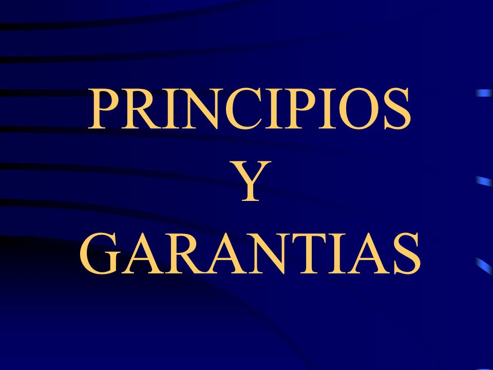 PRINCIPIOS Y GARANTIAS