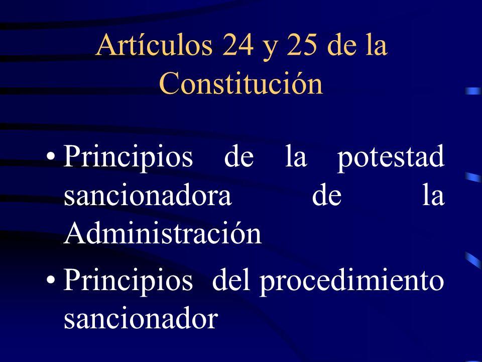 Artículos 24 y 25 de la Constitución
