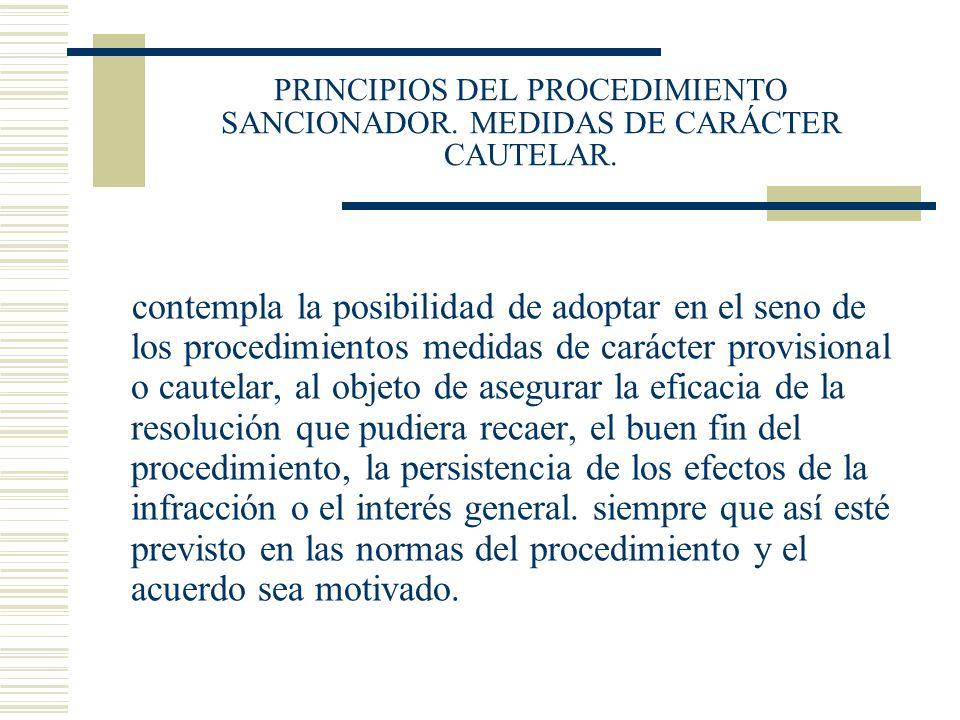 PRINCIPIOS DEL PROCEDIMIENTO SANCIONADOR. MEDIDAS DE CARÁCTER CAUTELAR.