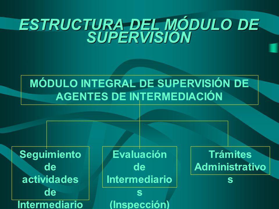 ESTRUCTURA DEL MÓDULO DE SUPERVISIÓN