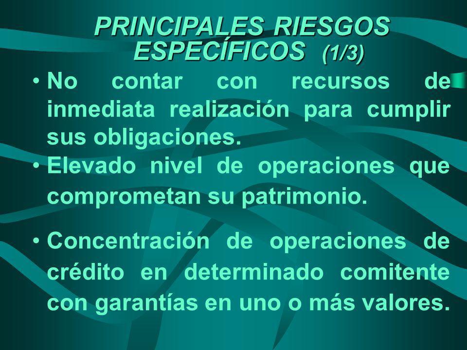 PRINCIPALES RIESGOS ESPECÍFICOS (1/3)
