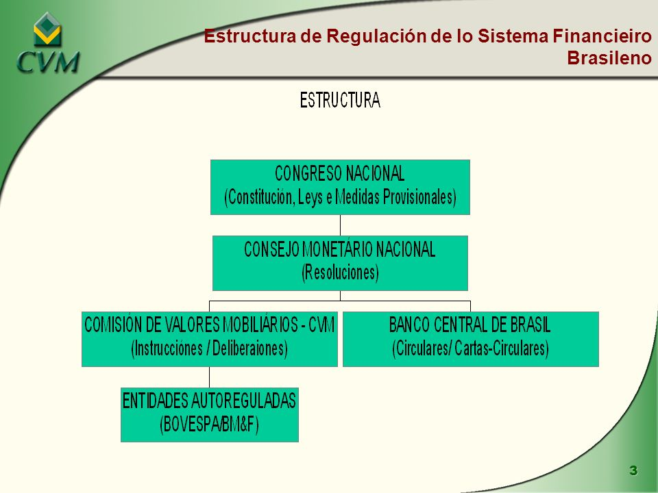 Estructura de Regulación de lo Sistema Financieiro Brasileno