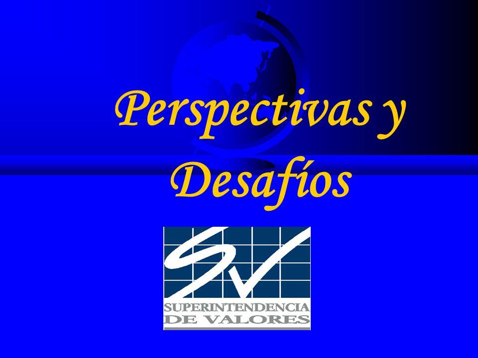 Perspectivas y Desafíos