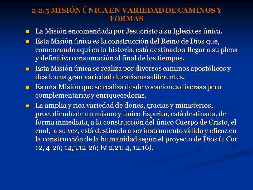 2.2.5 MISIÓN ÚNICA EN VARIEDAD DE CAMINOS Y FORMAS