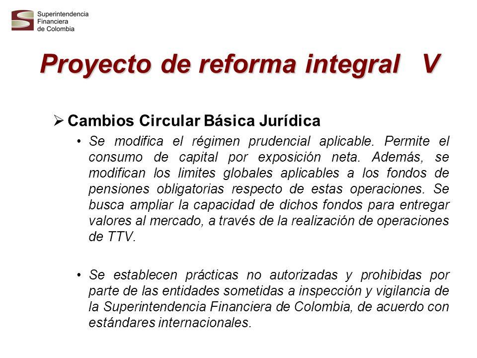 Proyecto de reforma integral V