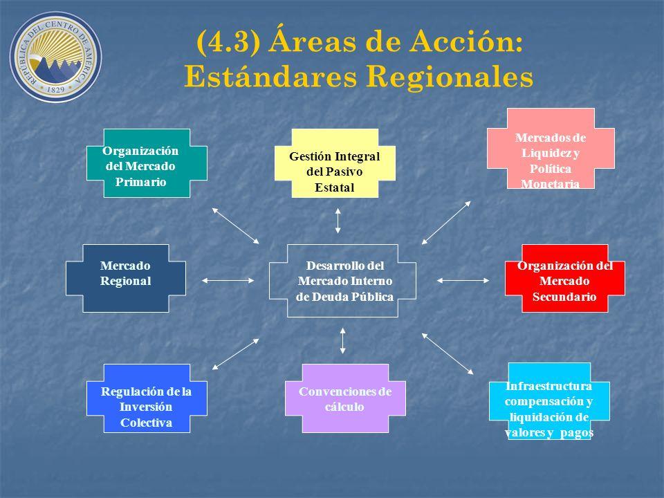 (4.3) Áreas de Acción: Estándares Regionales