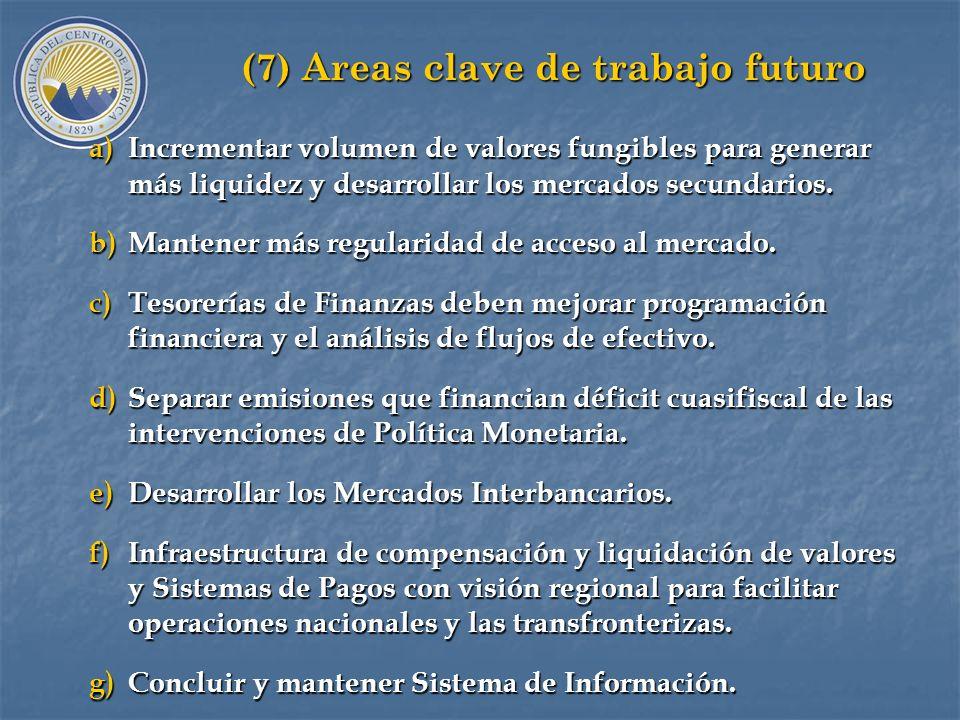 (7) Areas clave de trabajo futuro