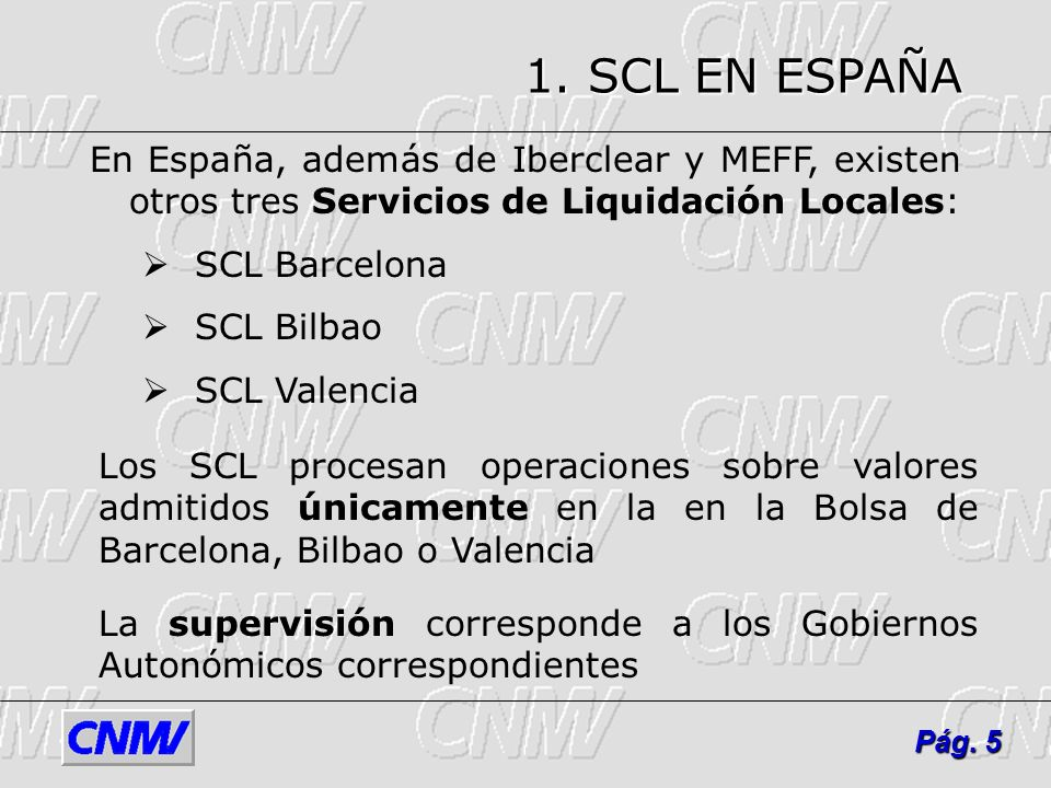 1. SCL EN ESPAÑAEn España, además de Iberclear y MEFF, existen otros tres Servicios de Liquidación Locales: