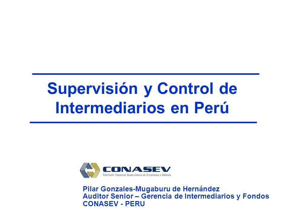 Supervisión y Control de Intermediarios en Perú