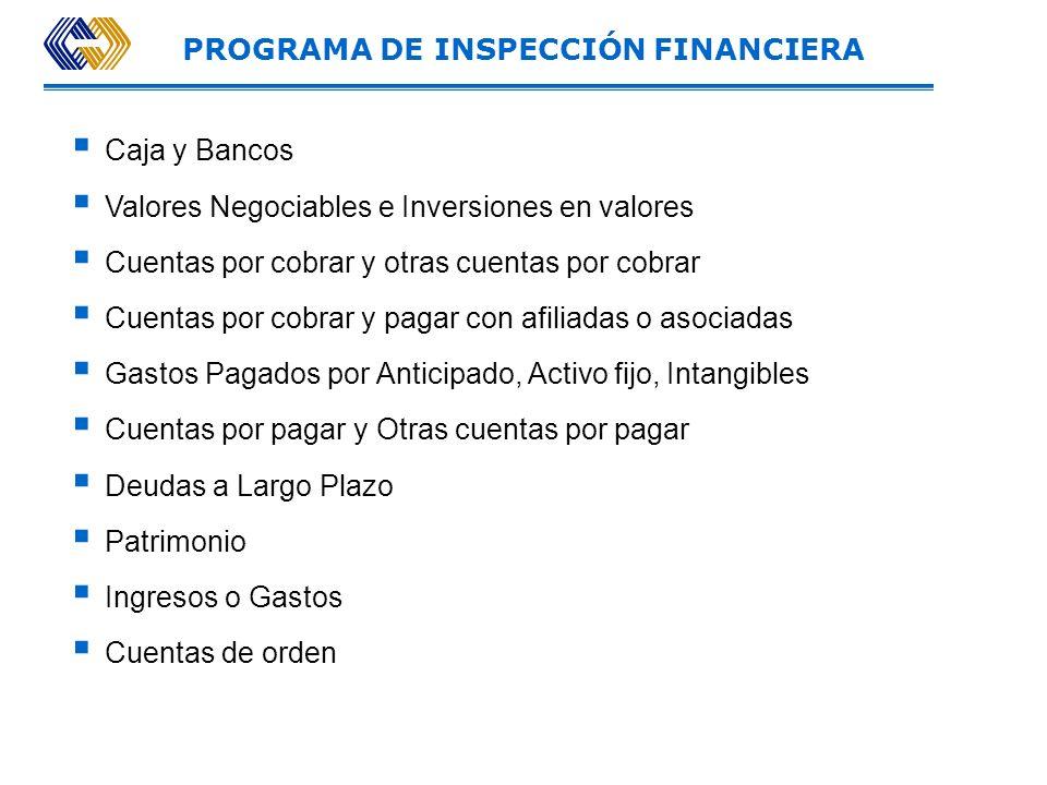 PROGRAMA DE INSPECCIÓN FINANCIERA