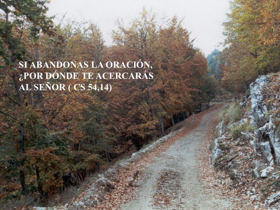SI ABANDONAS LA ORACIÓN, ¿POR DÓNDE TE ACERCARÁS AL SEÑOR ( CS 54,14)