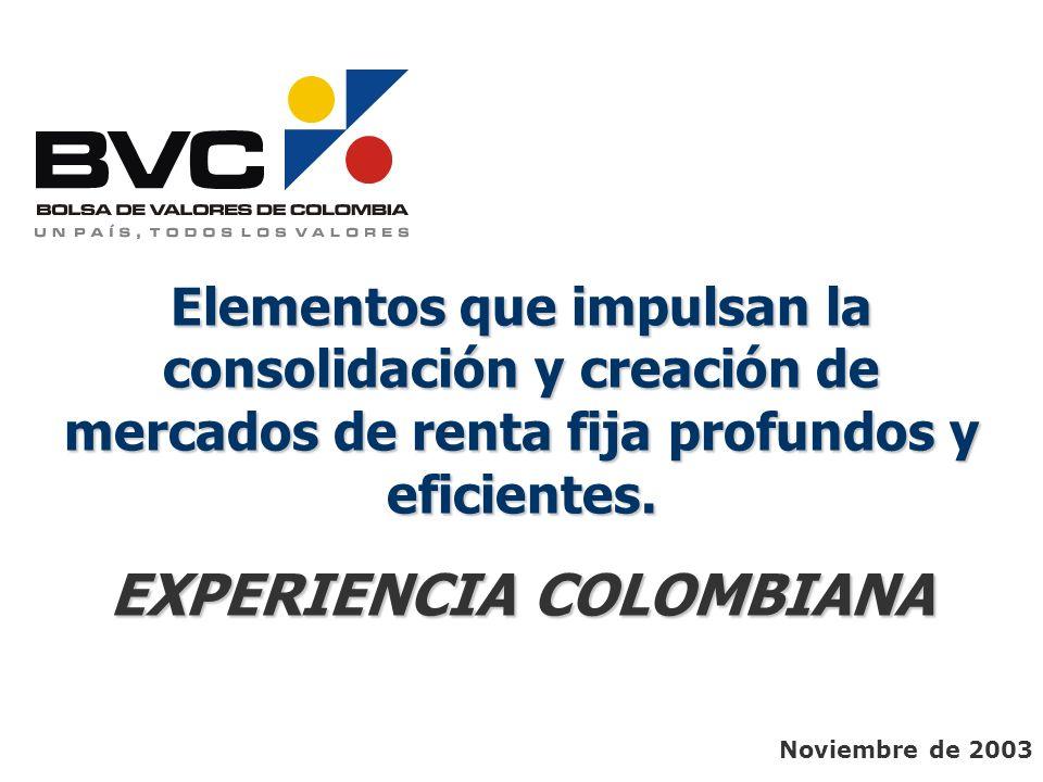 EXPERIENCIA COLOMBIANA