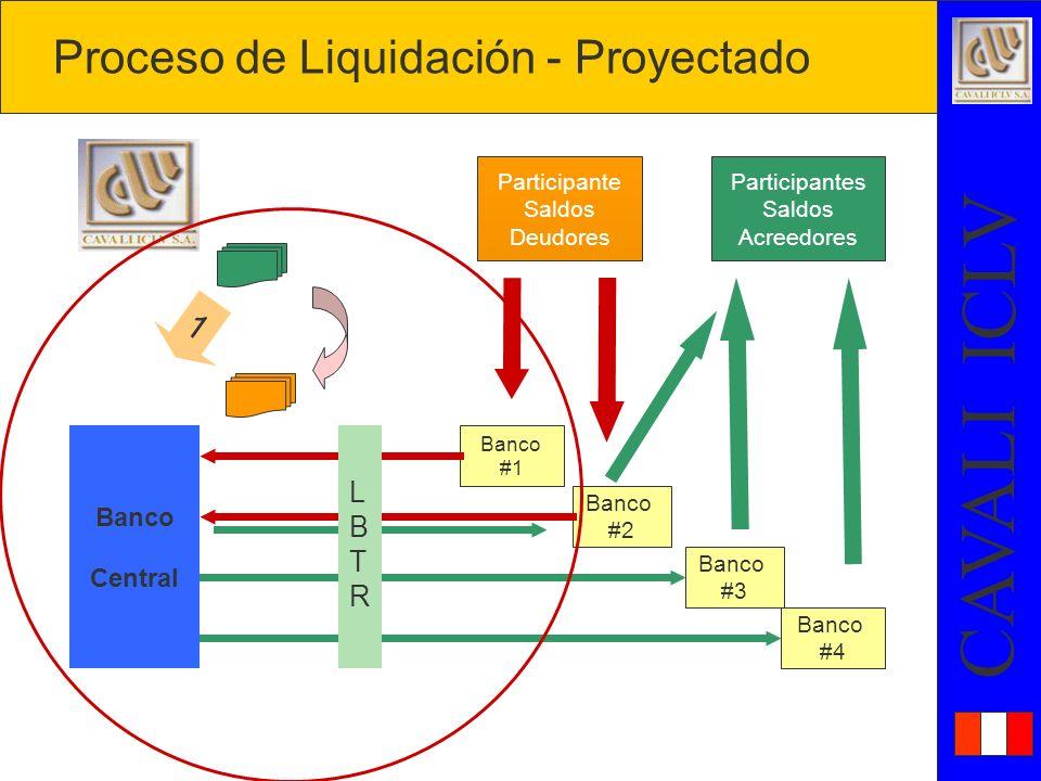 Proceso de Liquidación - Proyectado