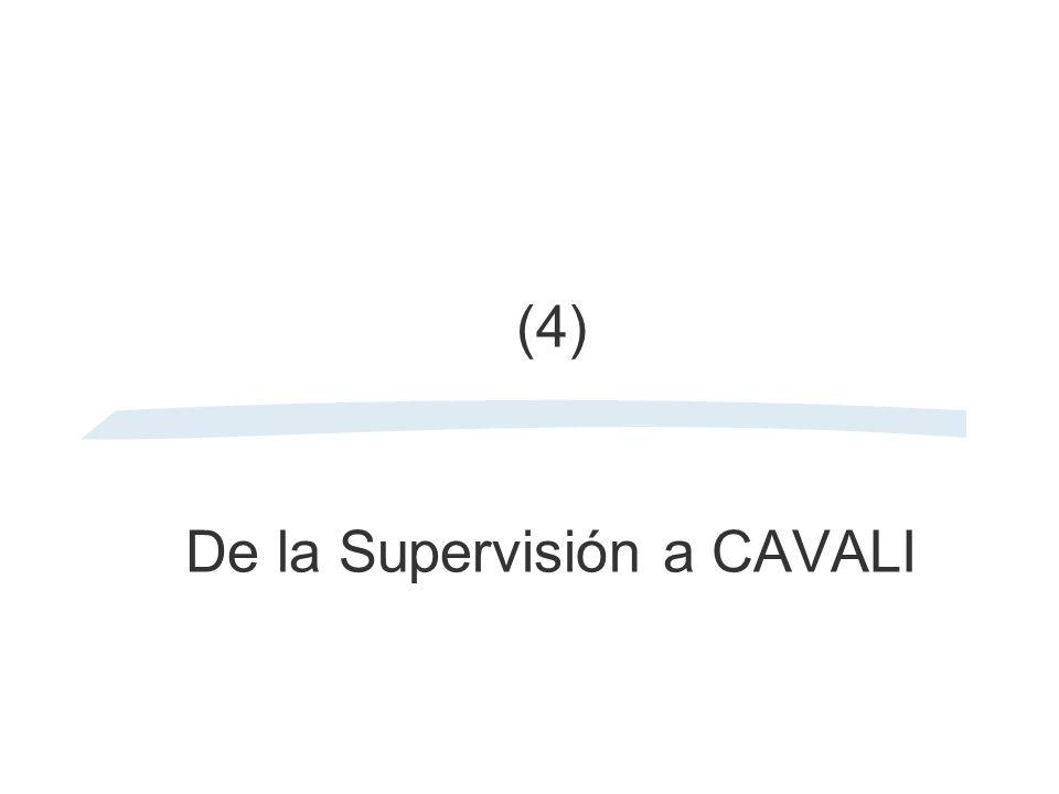 (4) De la Supervisión a CAVALI