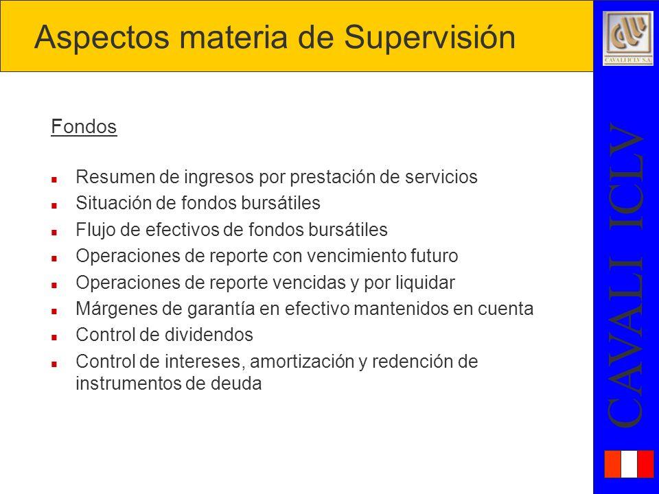 Aspectos materia de Supervisión