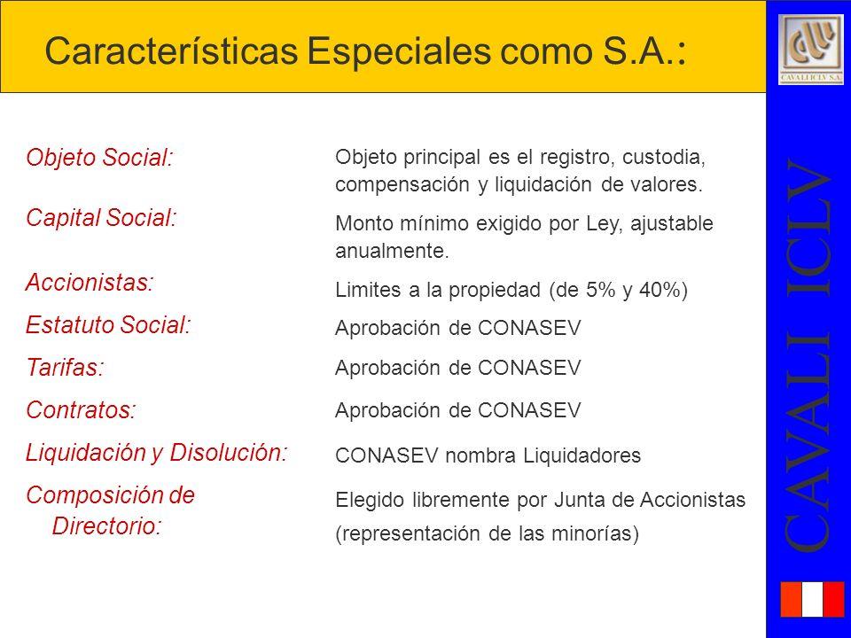 Características Especiales como S.A.: