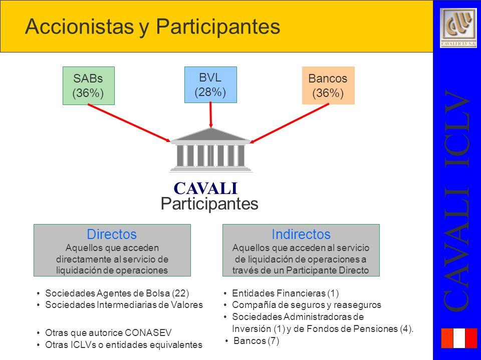 Accionistas y Participantes