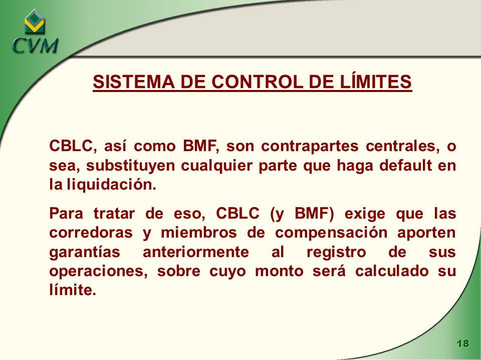 SISTEMA DE CONTROL DE LÍMITES