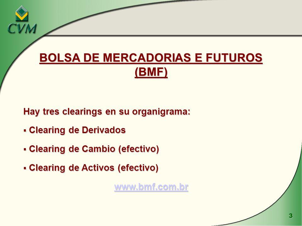 BOLSA DE MERCADORIAS E FUTUROS (BMF)